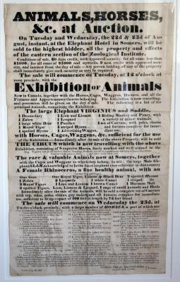 Circus and the Financial Panic of 1837