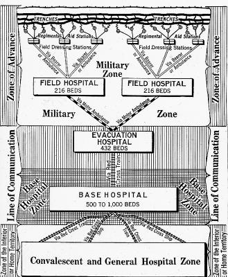 Diagram of Red Cross Hospital Hierarchy