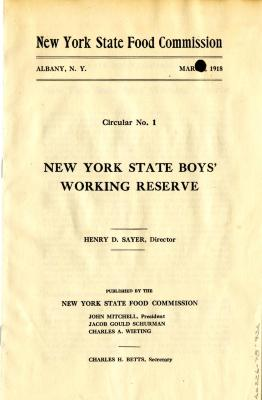New York State Boys' Working Reserve Pamphlet