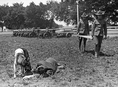 Training a Dog with the Medic Corps