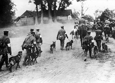 Germans Invading Russia with Their Dogs